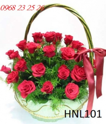 hoa ngay le hnl101