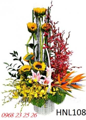 hoa ngay le hnl108