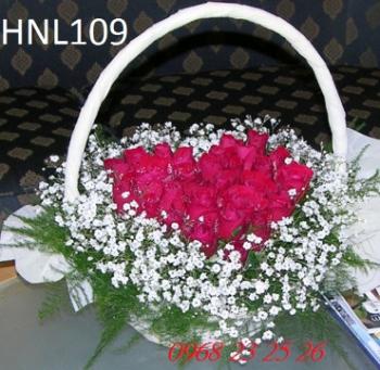 hoa ngay le hnl109