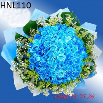 hoa ngay le hnl110
