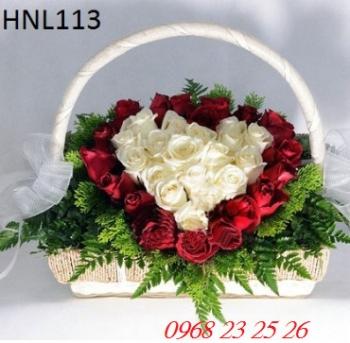 hoa ngay le hnl113