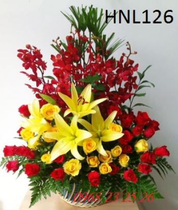 hoa ngay le hnl126