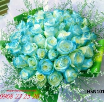 hoa sinh nhat  hsn101