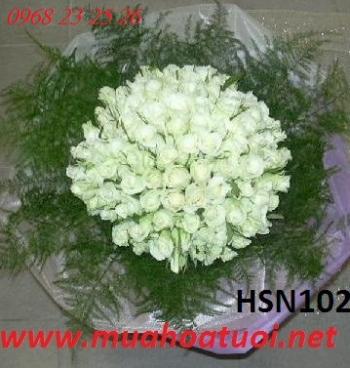 hoa sinh nhat  hsn102