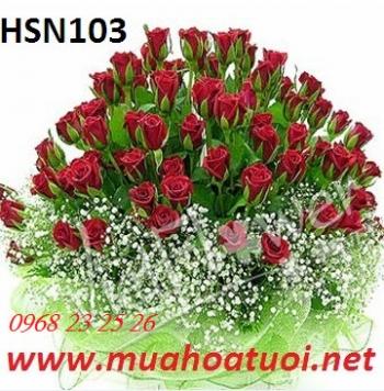 hoa sinh nhat  hsn103