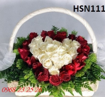 hoa sinh nhat  hsn111