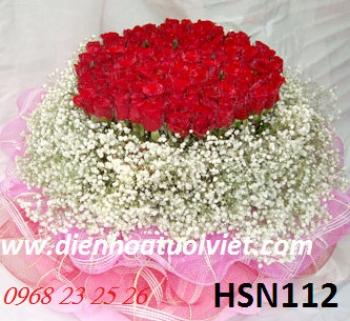 hoa sinh nhat hsn112