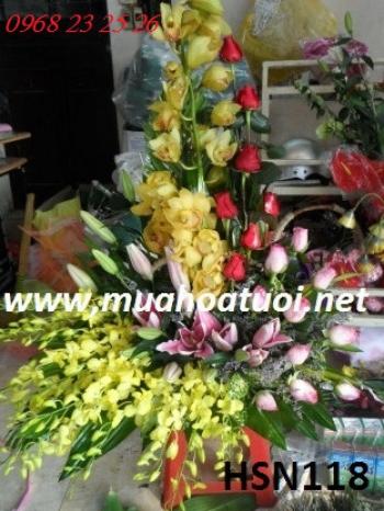 hoa sinh nhat hsn118