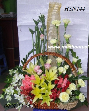hoa sinh nhat hsn144