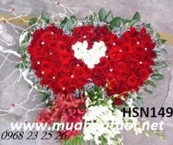 hoa sinh nhat hsn149