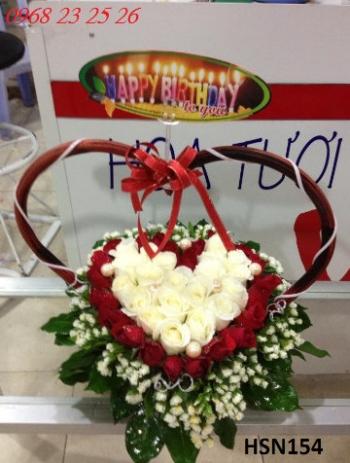 hoa sinh nhat hsn154