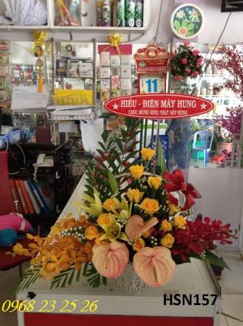 hoa sinh nhat hsn157