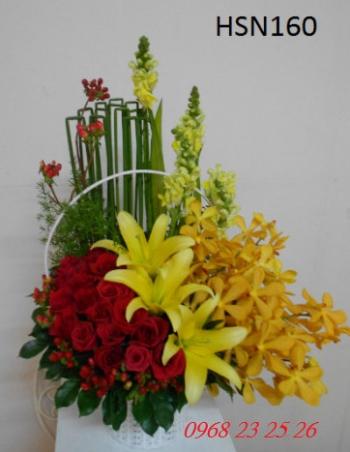 hoa sinh nhat hsn160
