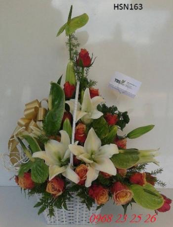 hoa sinh nhat hsn163