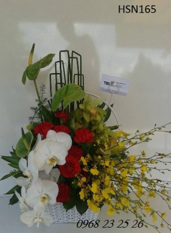 hoa sinh nhat hsn165
