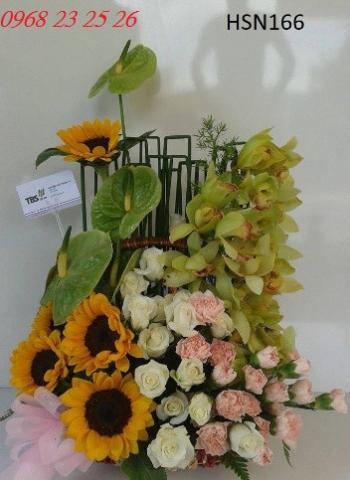 hoa sinh nhat hsn166