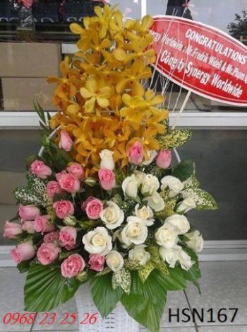 hoa sinh nhat hsn167