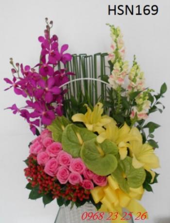 hoa sinh nhat hsn169