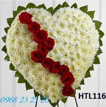 hoa tang le htl116
