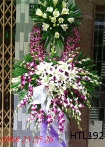 hoa tang le  htl192