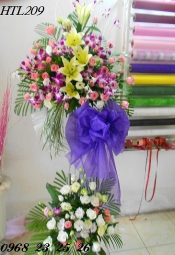 hoa tang le  htl209