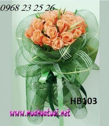 hoa bo hb103