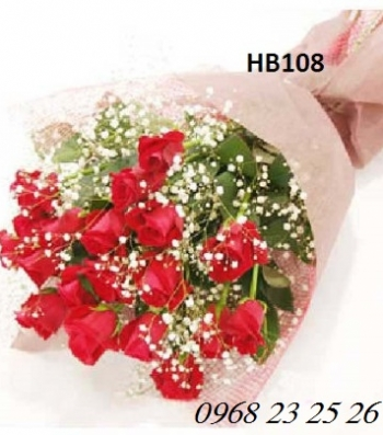 hoa bo hb108