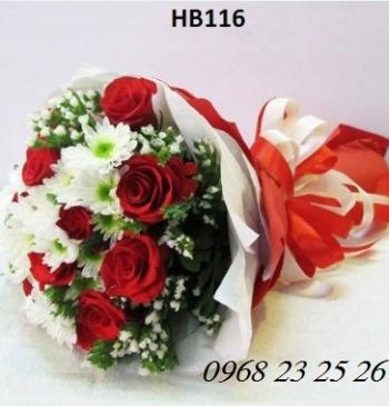 hoa bo hb116
