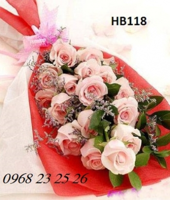 hoa bo hb118