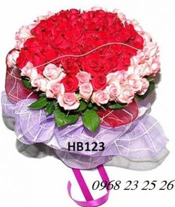 hoa bo hb123