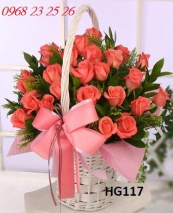 hoa gio hg117