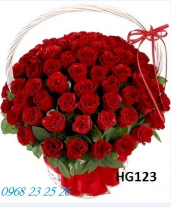 hoa gio hg123
